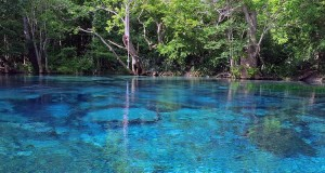 cold-spring-water-florida
